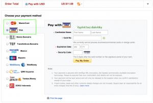 Zde vyplňujete platební údaje - Opište potřebné údaje z Vaší bankovní karty